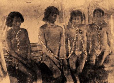 Irecê-indigenas brasileiros